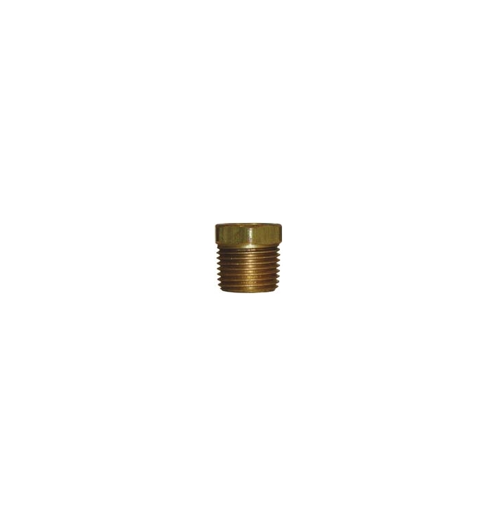 "BF1 | 3/8"" x 1/4"" Pipe Thread Bushing Brass Fitting"