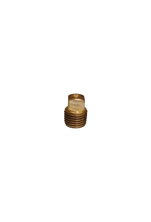 "BF10 | 1/4"" Pipe Thread Plug Brass Fitting"