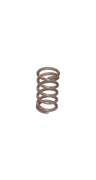 SP102468 | Poppet Spring For Coats 104266 Valve