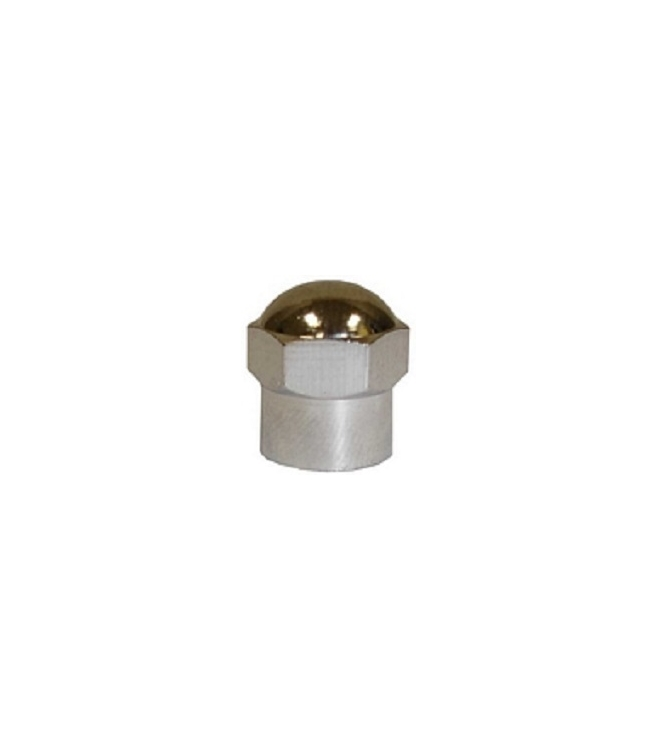 "TI108 | ""Chromed"" Plastic Cap For TPMS Applications, 100 per box"