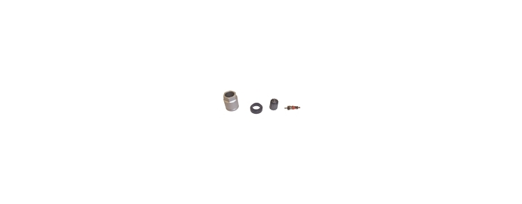 TR20096 | TPMS Replacement Parts Kit For Ford, Lincoln, Mercury